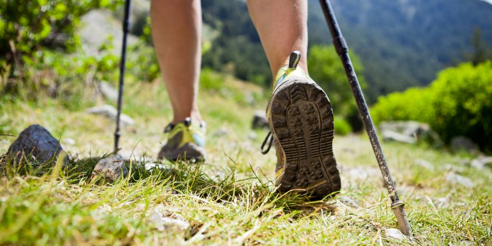 Good reasons to take up Nordic Walking
